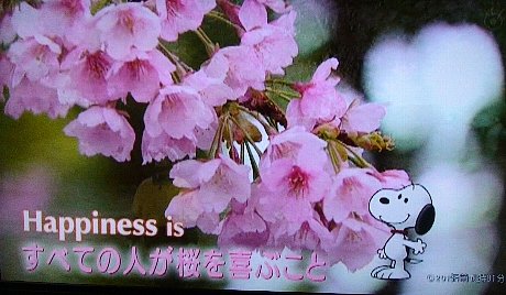 Happinessis2
